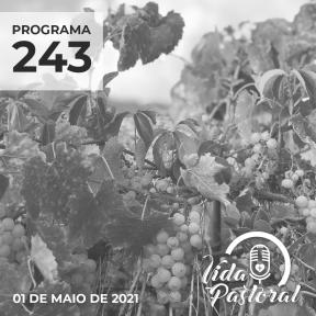 Vida Pastoral EP 243 - 1º de maio de 2021