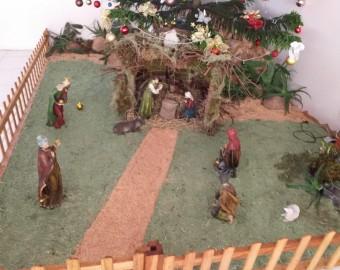 Comunidade Santa Edwiges - Paróquia São João Batista - Fátima