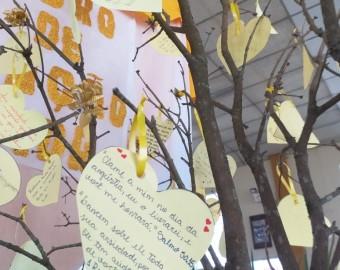 Setembro Amarelo Paróquia São João Batista
