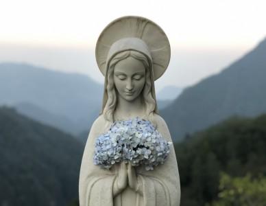 Dia Nacional do Congregado Mariano é comemorado em 16 de maio
