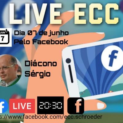 ECC de Schroeder fará live formativa em junho